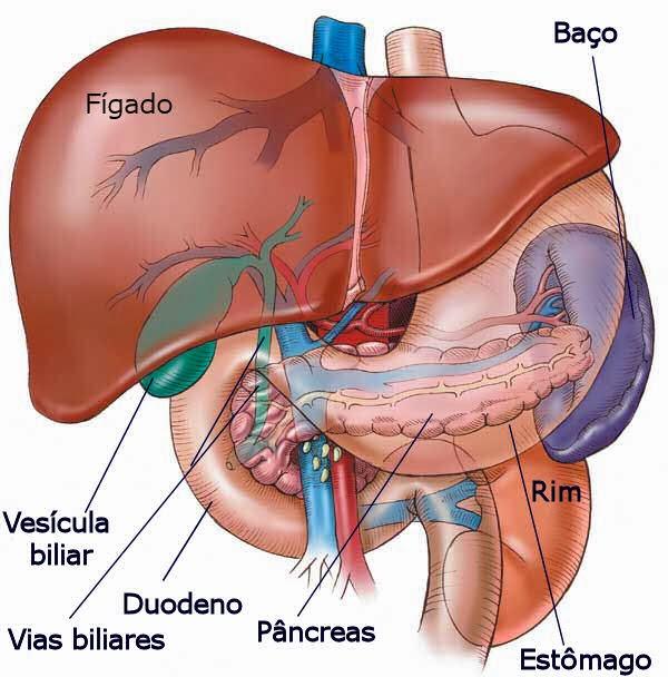 Cintilografia de fígado e baço (hepática) em Brasília