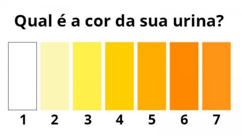 Cor da urina diferente: o que pode ser? Devo me preocupar?