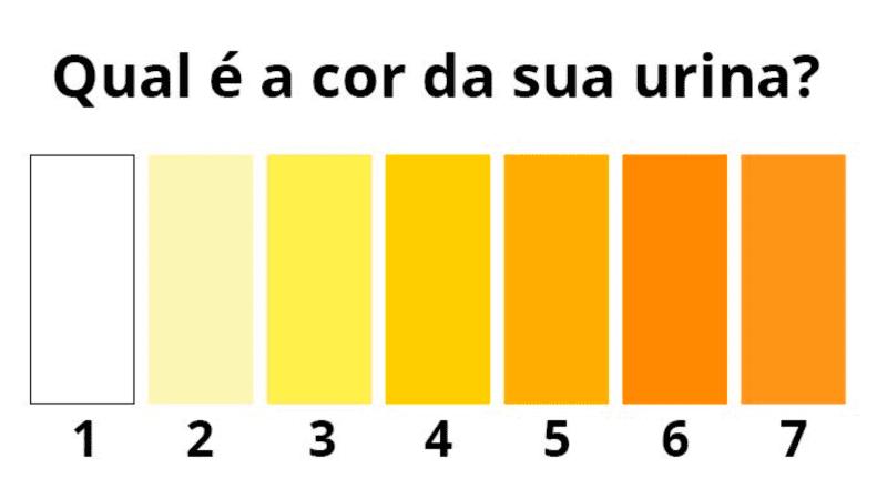 urina amarela cor da urina urina escura urina roxa urina laranja urina muito amarela urina vermelha