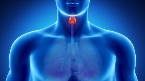 Sintomas de distúrbios da tireoide podem ser confundidos com depressão e outras doenças