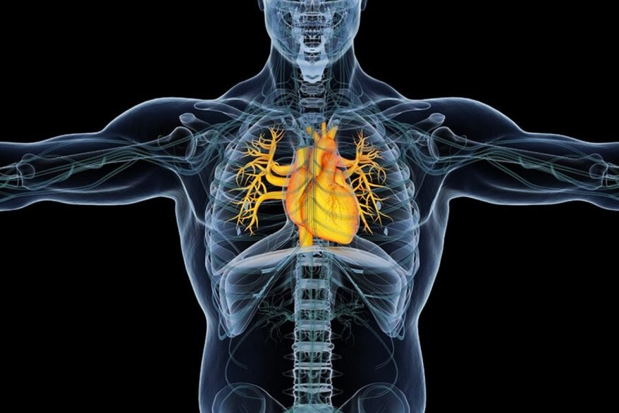 Ressonância magnética cardíaca onde fazer